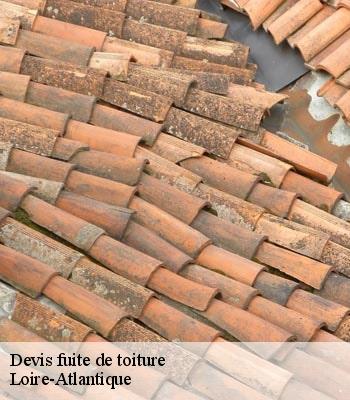 Devis Fuite De Toiture 44 Loire Atlantique Tel 02 52 56 29 06